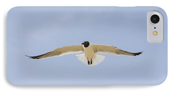 IPhone Case featuring the photograph Graceful Gull by Bradley Clay