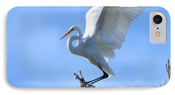 IPhone Case featuring the photograph Graceful Landing by Deb Halloran