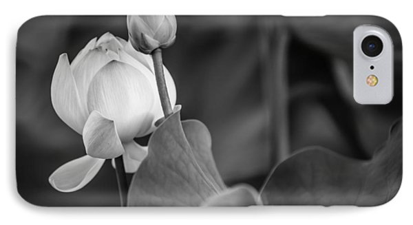 Graceful Lotus. Balck And White. Pamplemousses Botanical Garden. Mauritius Phone Case by Jenny Rainbow