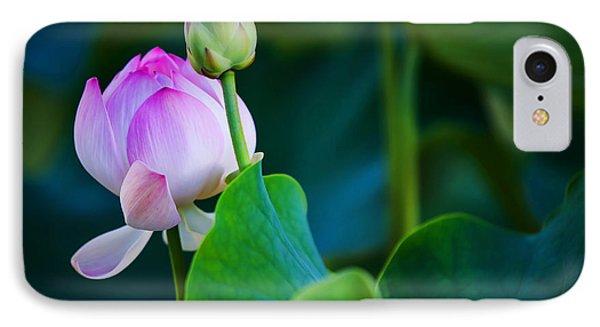 Graceful Lotus. Pamplemousses Botanical Garden. Mauritius IPhone Case by Jenny Rainbow