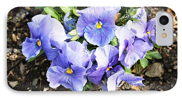 IPhone Case featuring the photograph Graceful Pansies by Judy Palkimas
