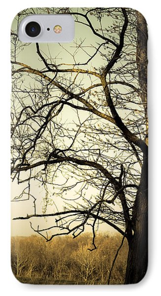 Graceful Tree Phone Case by Cara Moulds