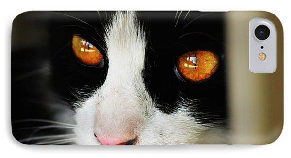 Gracie's Eyes IPhone Case