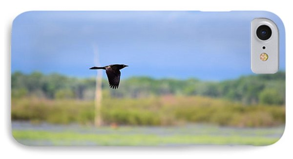 Grackle In Flight Phone Case by Bonfire Photography
