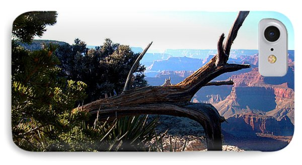 Grand Canyon Dead Tree IPhone Case by Matt Harang