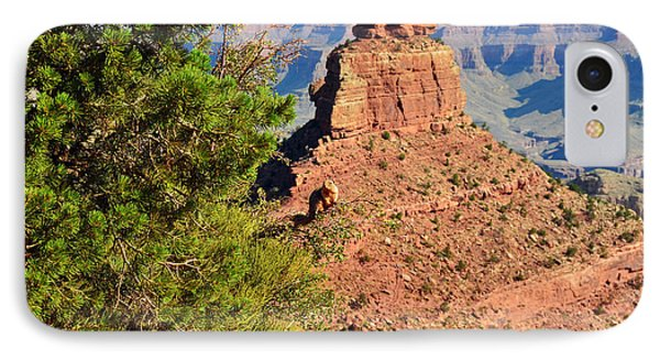 Grand Canyon Squirrel Out On A Limb In Front Of Oneill Butte IPhone Case