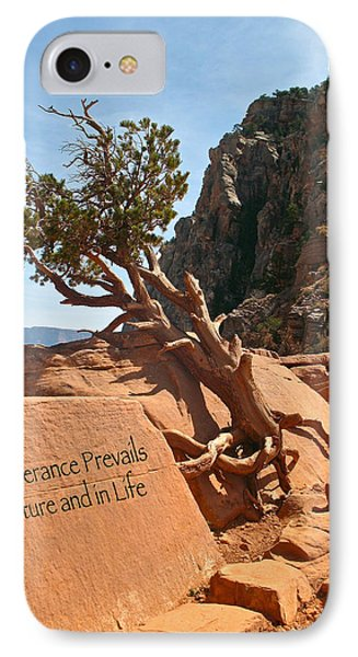 IPhone Case featuring the photograph Grand Canyon Survivor by Kathleen Scanlan