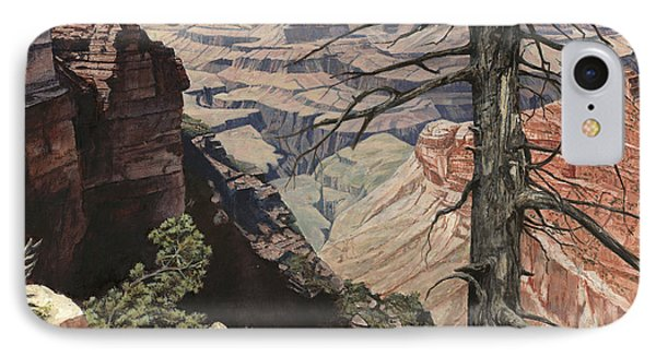 Grand Canyon View Weathered Tree Right Side  IPhone Case by Don  Langeneckert