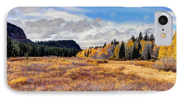 Grand Mesa Colors Phone Case by Bob Hislop