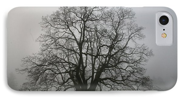 Grand Oak Tree IPhone Case by Rich Collins