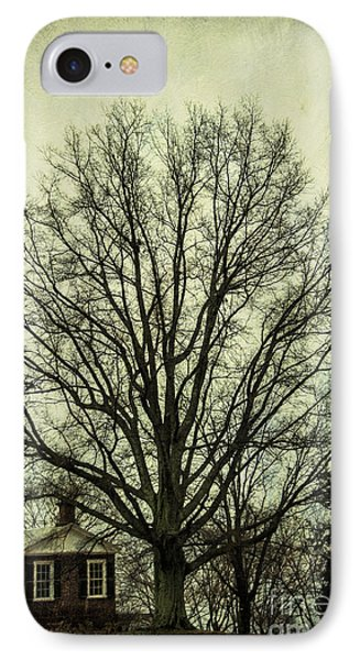 Grand Old Tree IPhone Case by Terry Rowe