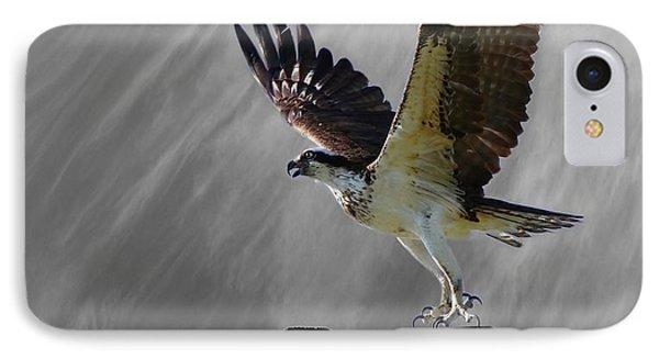 Grand Ole Osprey IPhone Case by Davandra Cribbie