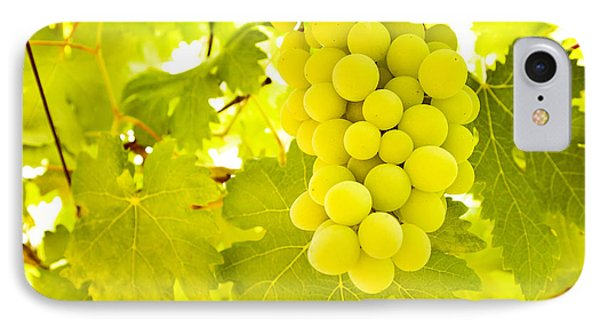 Grape Branch Phone Case by Anna Om