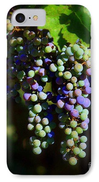 Grape Pre-vino Phone Case by Patrick Witz