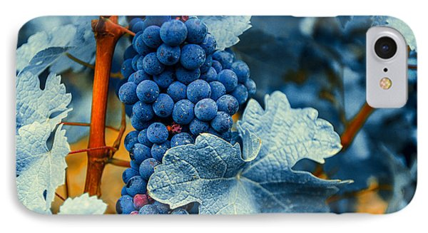 Grapes - Blue  Phone Case by Hannes Cmarits