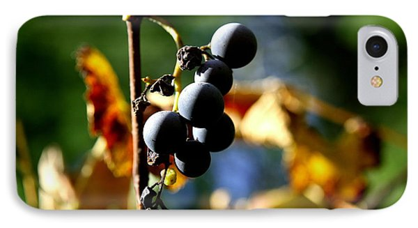 Grapes On The Vine No.2 IPhone Case by Neal Eslinger