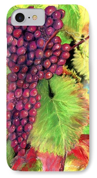 Grapes On Vine Pastel IPhone Case by Antonia Citrino