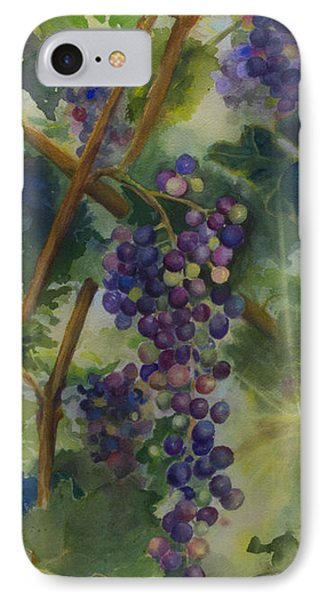 Baby Cabernets II   Triptych IPhone Case
