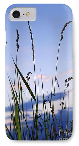 Grass At Sunset IPhone Case by Elena Elisseeva