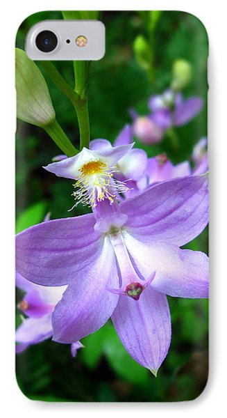Grass Pink Orchid IPhone Case