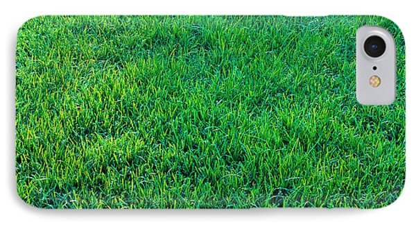 Grass Sacramento Ca Usa IPhone Case by Panoramic Images