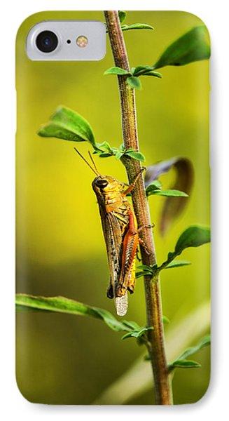 Grasshopper iPhone 7 Case - Grasshopper Days by Susan Capuano