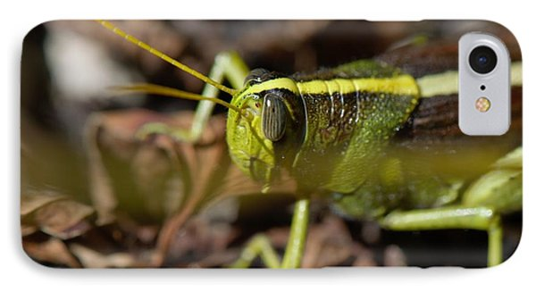 IPhone Case featuring the photograph Grasshopper by Karen Kersey
