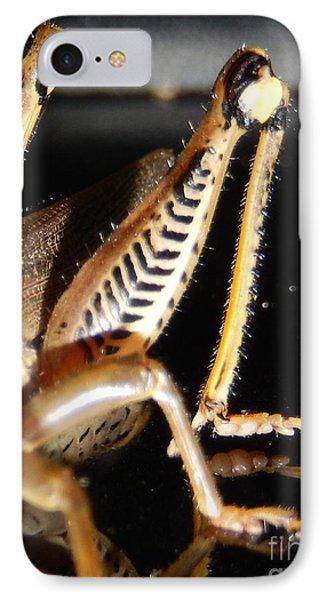 Grasshopper Legs Phone Case by Nola Hintzel