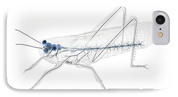 Grasshopper iPhone 7 Case - Grasshopper Nervous System by Peter Matulavich