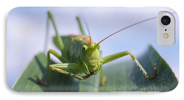 Grasshopper Phone Case by Tilen Hrovatic