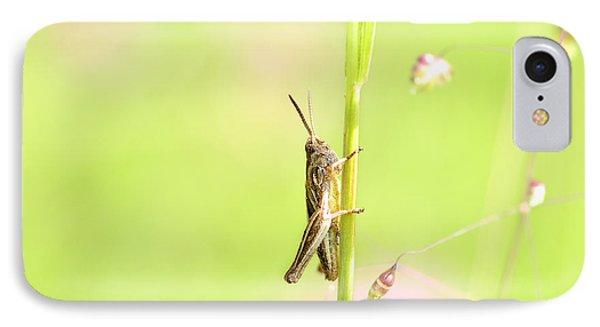 Grasshopper  Phone Case by Tommytechno Sweden