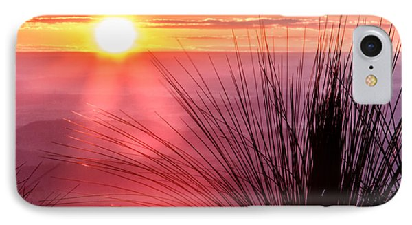 IPhone Case featuring the photograph Grasstree Sunset by Peta Thames