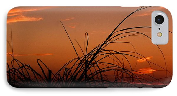 Grassy After Glow IPhone Case by Richard Zentner