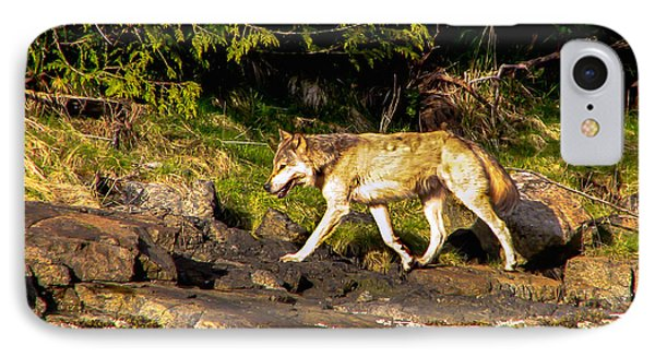 Gray Wolf Phone Case by Robert Bales