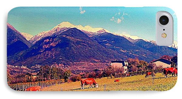 Grazing Cows 2 Phone Case by Giuseppe Epifani