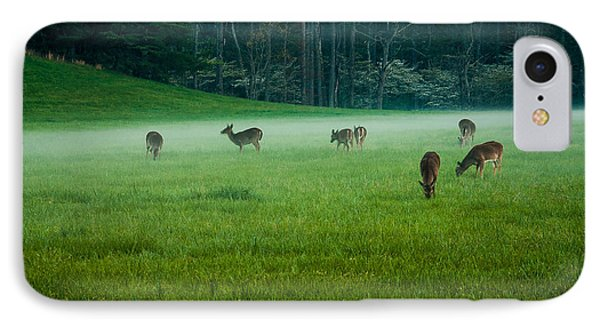 Grazing Deer IPhone Case by Jay Stockhaus