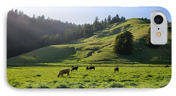 IPhone Case featuring the photograph Grazing Hillside by CML Brown
