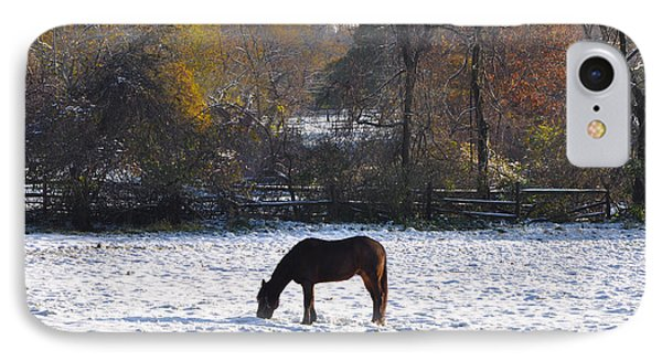 Grazing On A Snowy Day IPhone Case by Bill Cannon