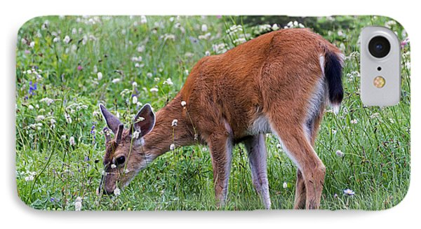 Grazing Young Buck Phone Case by Mike Dawson