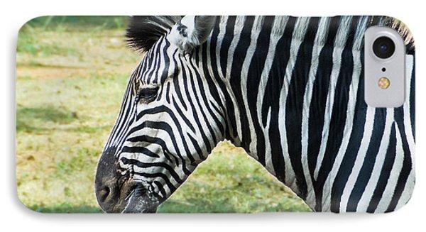 Grazing Zebra IPhone Case