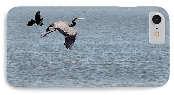 Great Blue Chased By A Grackle Phone Case by Roy Williams