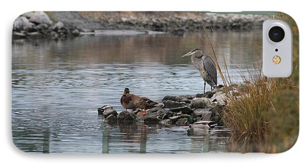 IPhone Case featuring the photograph Great Blue Heron And Friends by Robert Banach