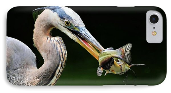 IPhone Case featuring the photograph Great Blue Heron And The Catfish by Kathy Baccari