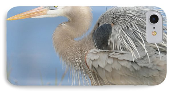 IPhone Case featuring the photograph Great Blue Heron by Bradford Martin