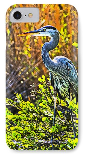 Great Blue Heron Phone Case by Dennis Cox WorldViews
