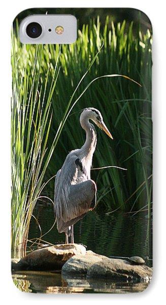 Great Blue Heron IPhone 7 Case by Ellen Henneke