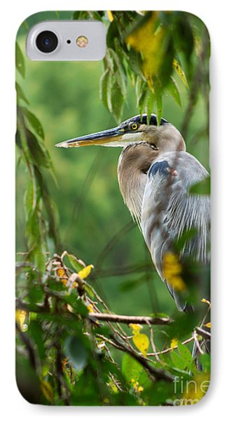 IPhone Case featuring the photograph Great Blue Heron by Eva Kaufman