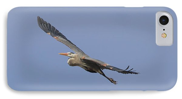 Great Blue Heron In Flight-2 IPhone Case