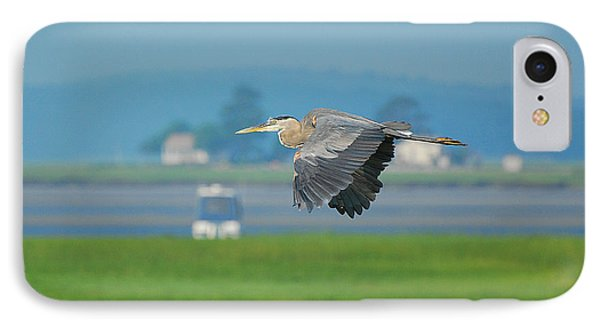 Great Blue Heron Phone Case by Nancy Landry