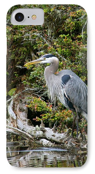 Great Blue Heron On Log Phone Case by Randall Ingalls